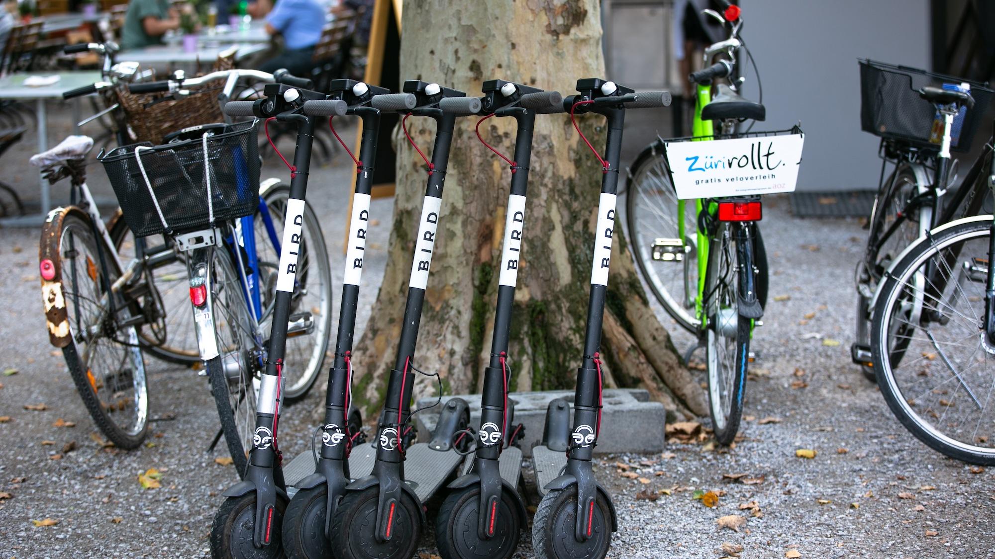 E-Trottis breiten sich rasant in Schweizer Städten aus: Warum die Idee mit den E-Trottis zum Scheitern verurteilt ist