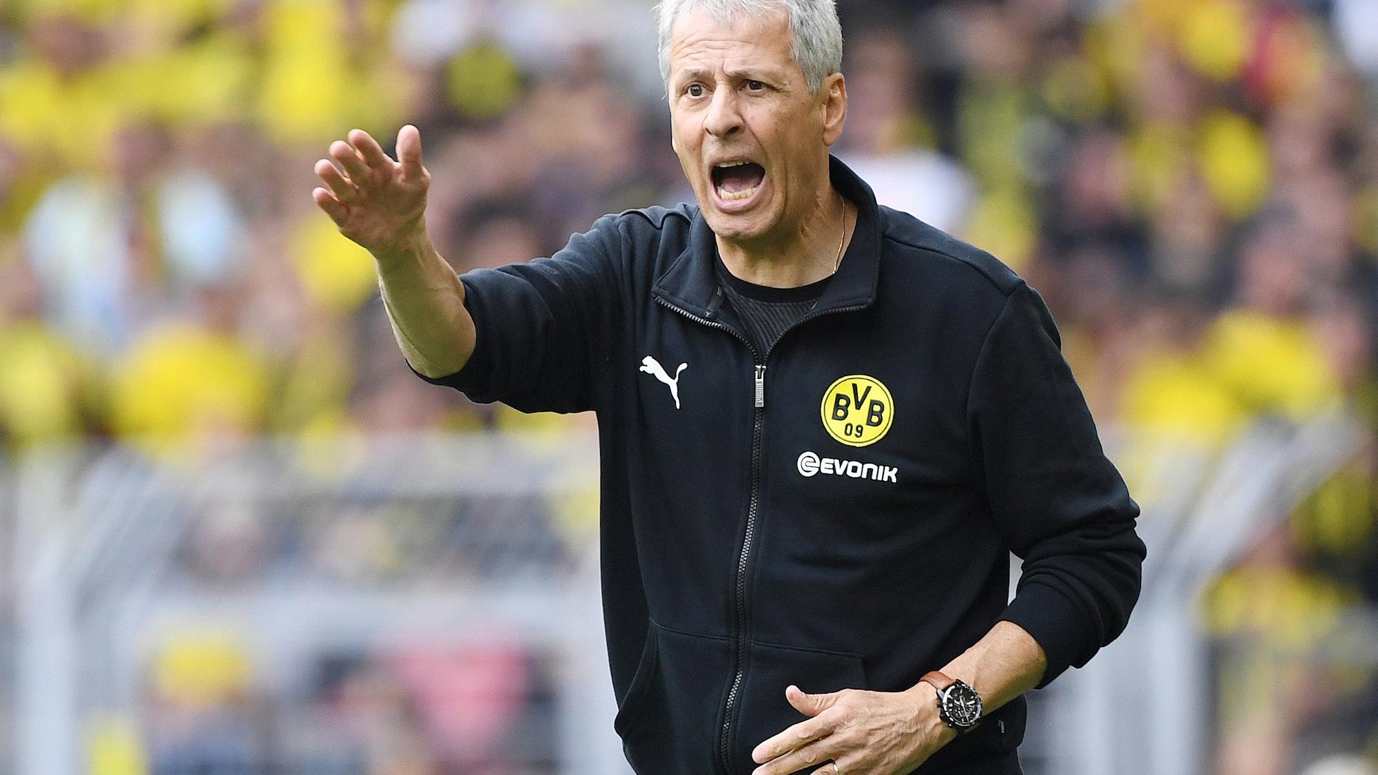 So stach er Jogi Löw aus: Neues Buch gibt Einblicke in Gedankenwelt von BVB-Trainer Favre