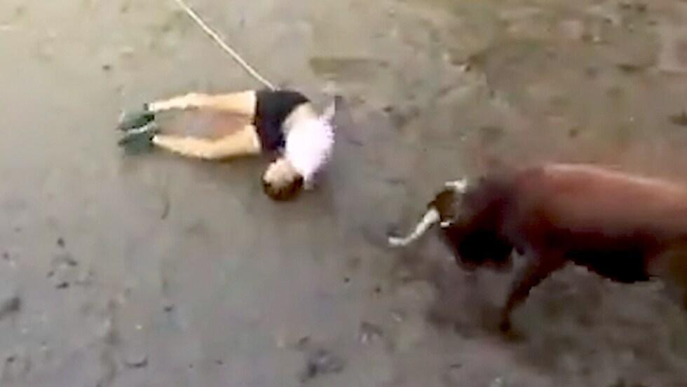Sokamuturra in Spanien: Stier rennt Mann in den Kopf!