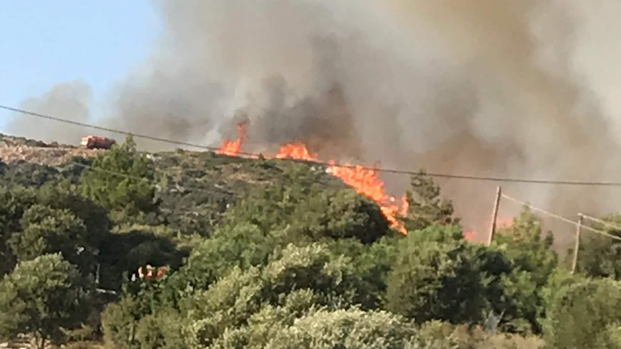 «Mussten das Hotel verlassen»: Zürcherin erlebt Waldbrand auf Samos