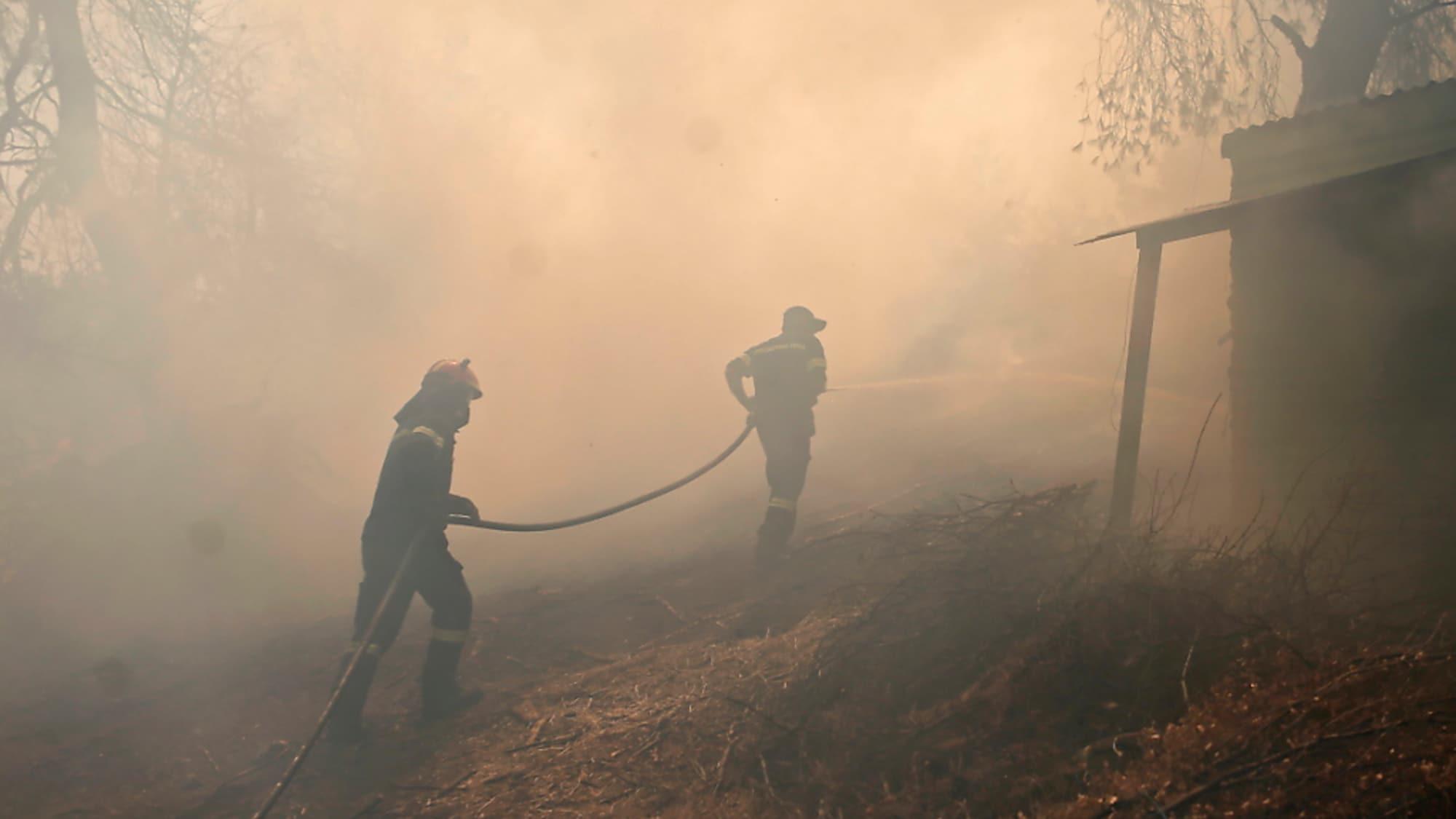 Waldbrand: Hunderte Touristen auf griechischer Insel Samos evakuiert