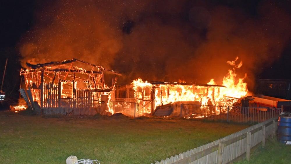 Brand: Stallbrand in Schwarzenberg LU: Drei Pferde und acht Ziegen sterben