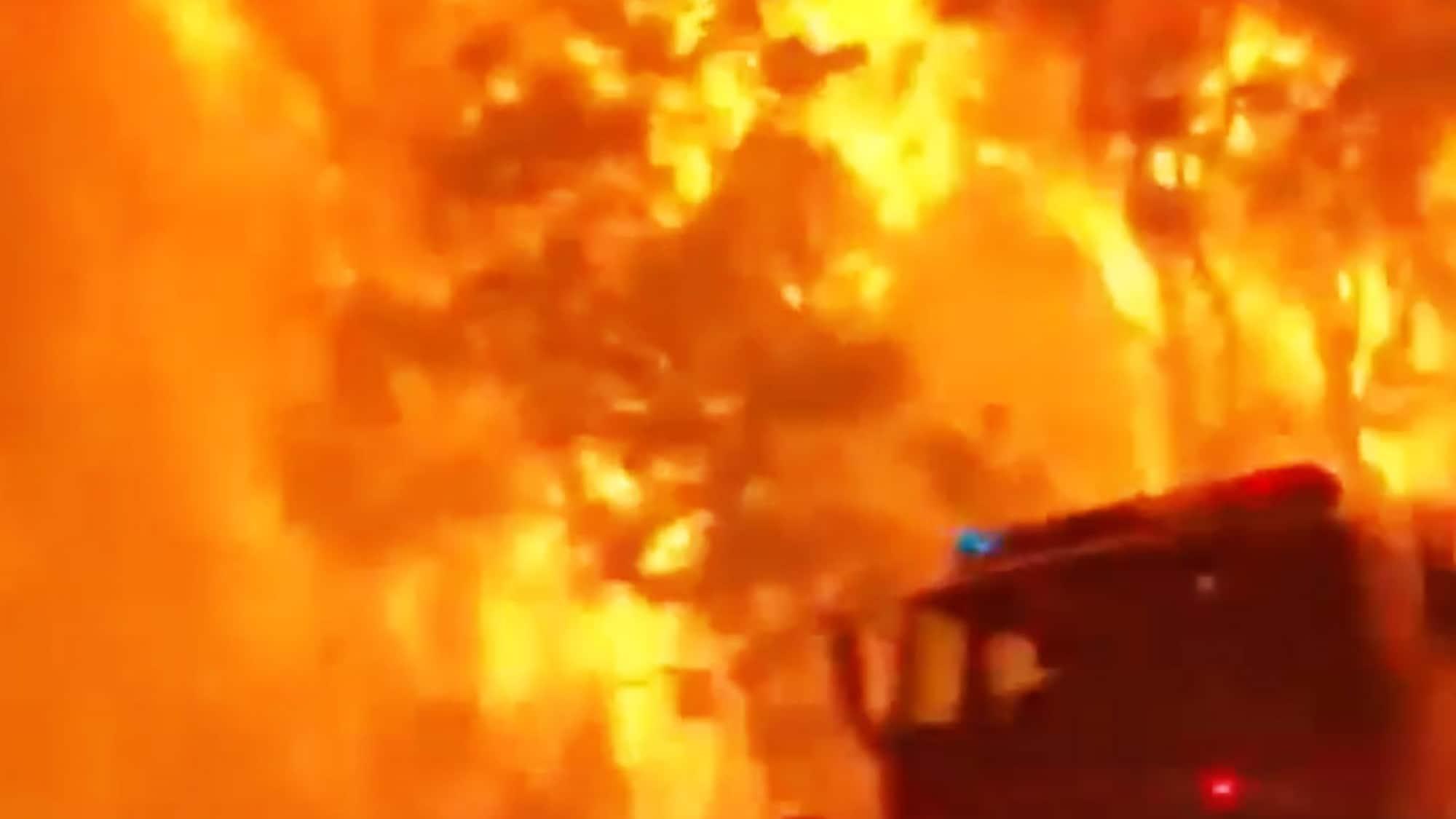 Kronenfeuer bei Sydney: Hier flieht die Feuerwehr vor dem Flammeninferno