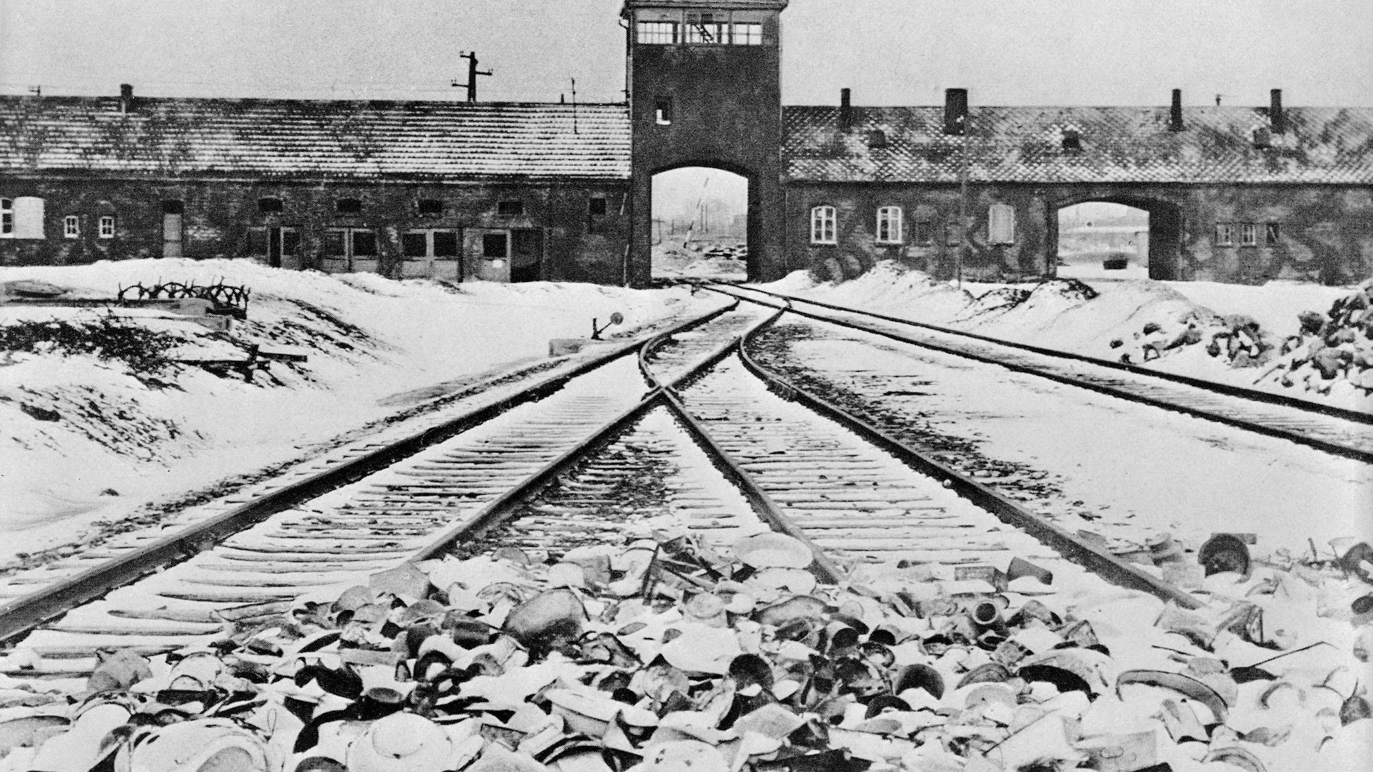 75 Jahre Auschwitz-Befreiung: Mahnmal für Schweizer Nazi-Opfer