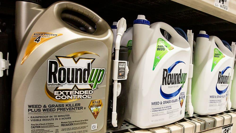 US-Rechtsstreit um Glyphosat: Bayer akzeptiert Vergleich - Blick