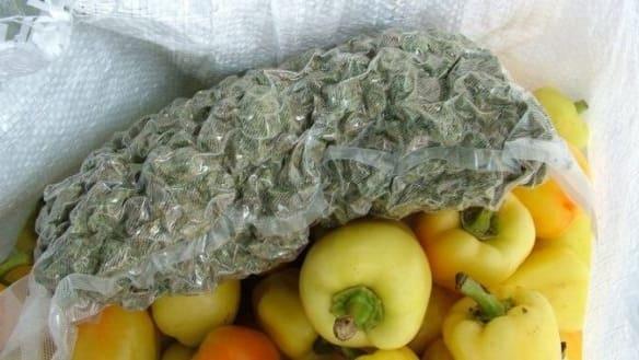 Peperoni als Tarnung: Ungarische Polizei beschlagnahmt Drogen-Lieferung in die Schweiz