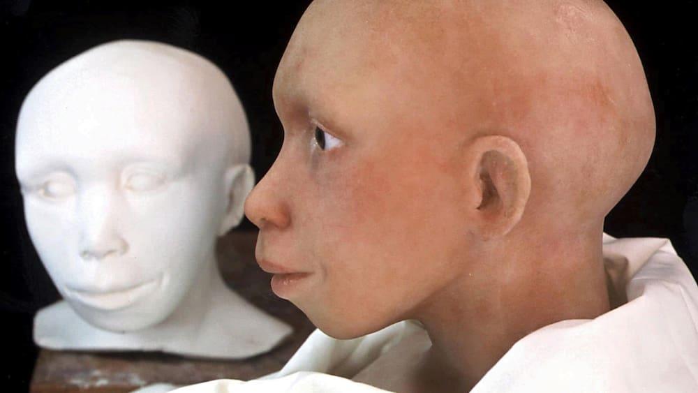 farbschichten-auf-steinen-forscher-finden-beweis-f-r-neandertaler-kunst