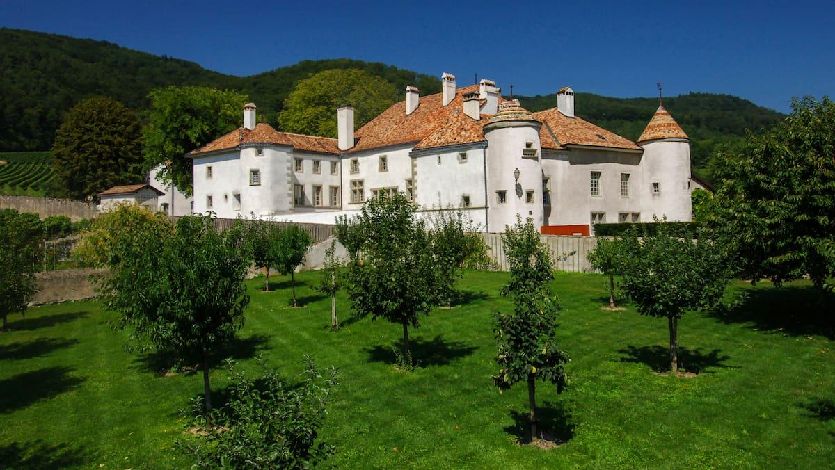 Château Le Rosey kommt unter den Online-Hammer