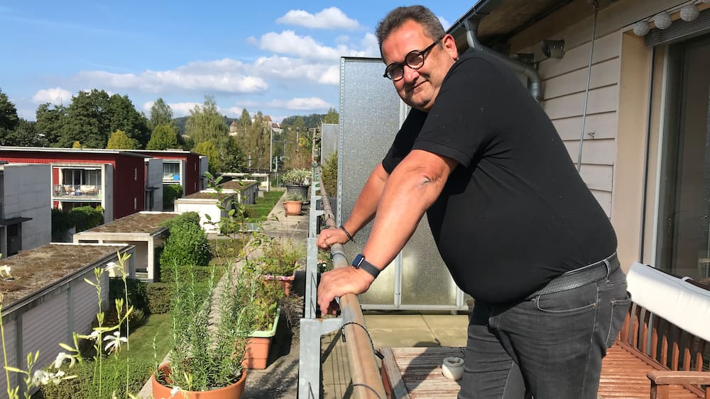 Pflanzenschutz muss in Burgdorf BE einen Rosmarin beschlagnahmen - Blick
