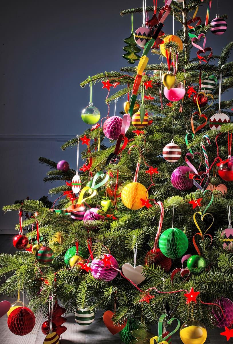 Bvb Weihnachtsbaum.Warum Weihnachtsbaum Zu Weihnachten Mieten Blick