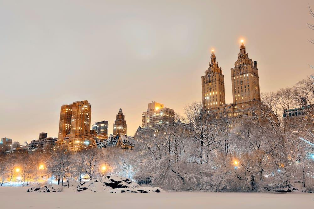 Weihnachtsurlaub In New York Weihnachtsshopping Blick