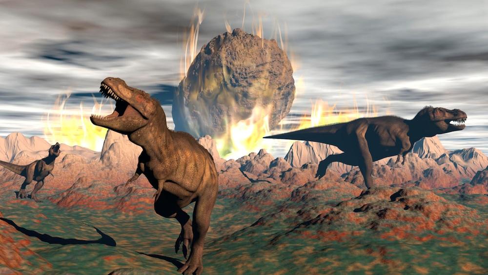 Warum Sind Dinosaurier Ausgestorben
